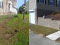 Lawn Care Landscape Work