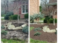 Before After Mulch 1