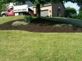 After Mulch 2