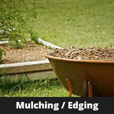 Mulching / Edging