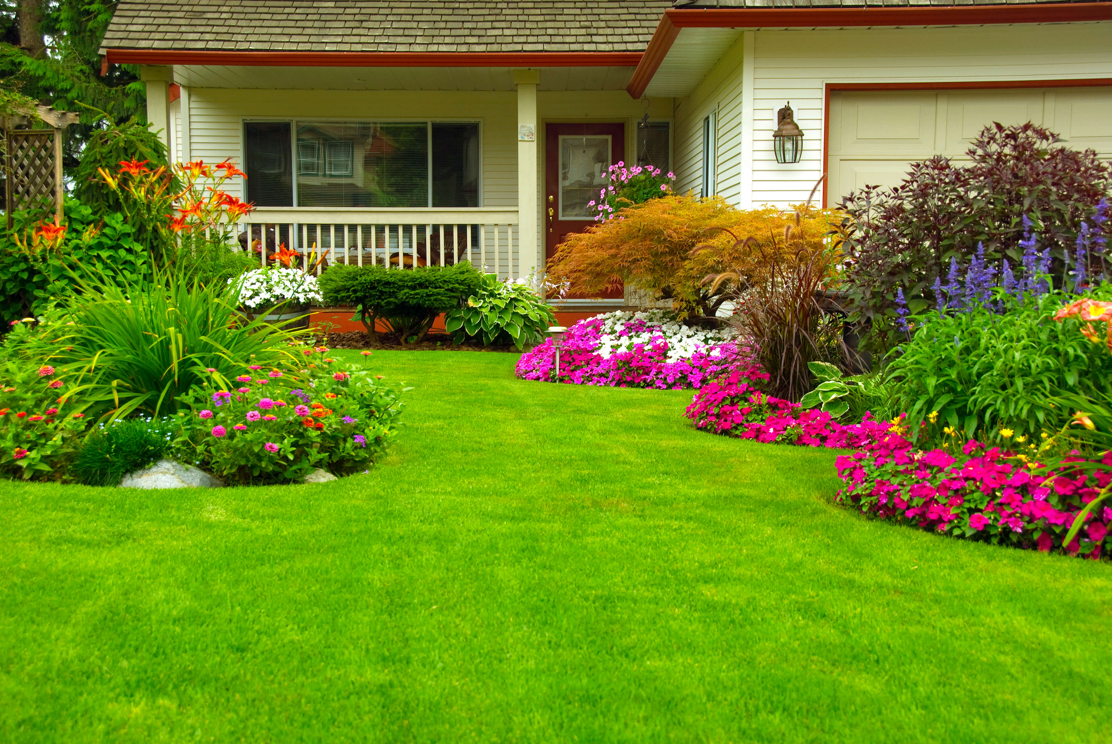 amazing lawn care tips from  landscaping   landscaping, Natural flower